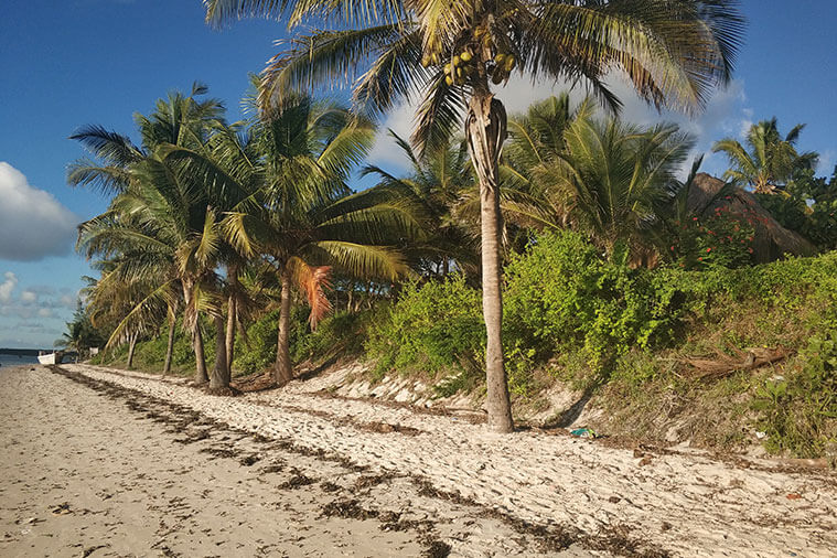 Tailor made vacations southern Mozambique Bazaruto archipelago