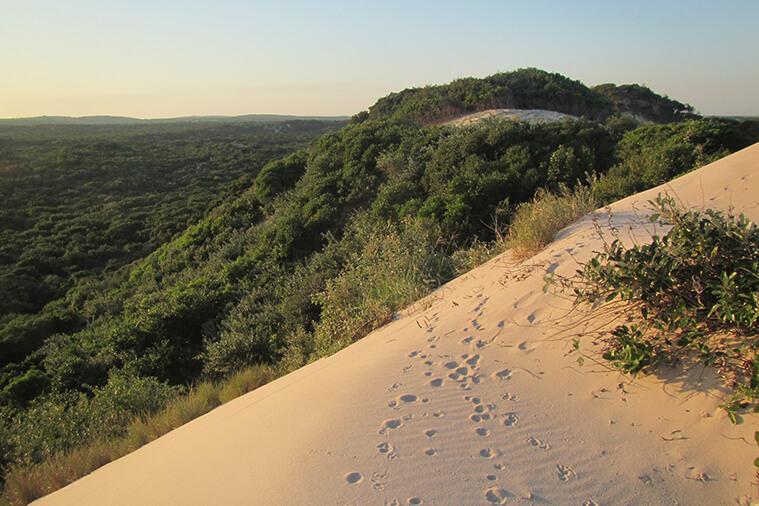 calanga beach dunes