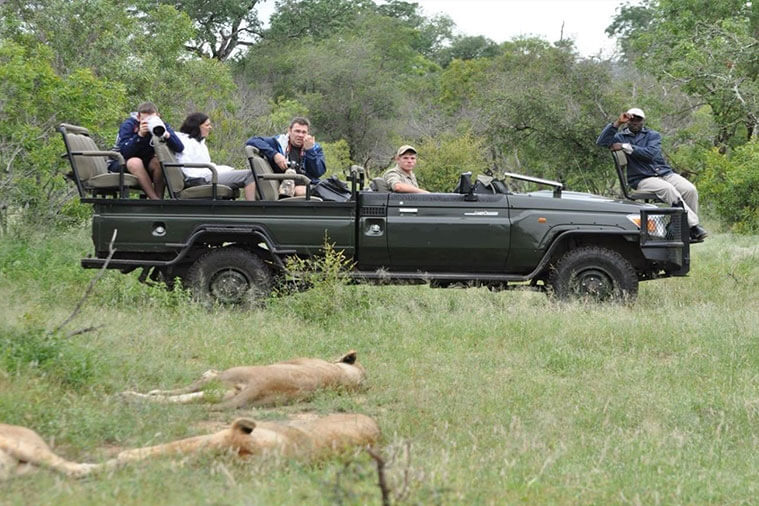 Sabie Game Park Tour