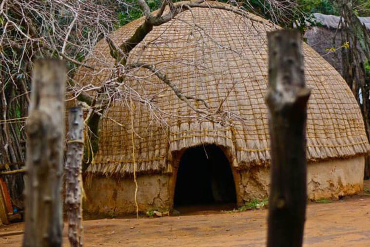 swaziland day tour