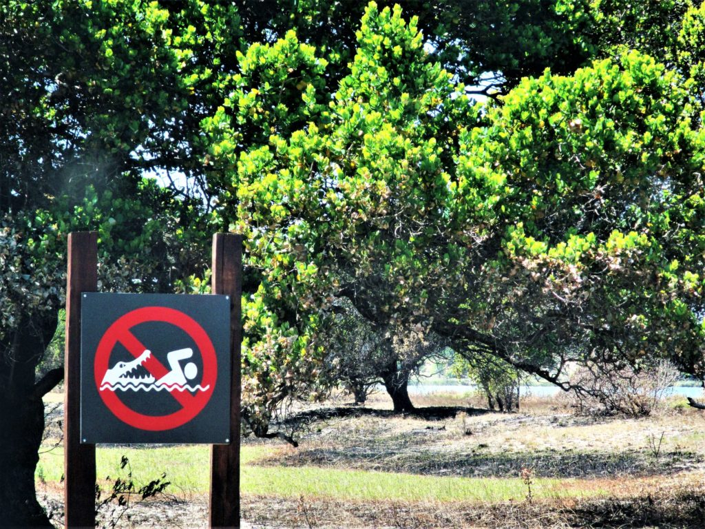 mozambique animals